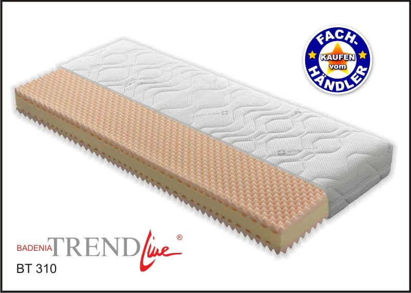 badenia bt 310 7 zonen kaltschaum matratze in verschiedenen gr en ebay. Black Bedroom Furniture Sets. Home Design Ideas